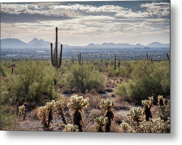 Scottsdale Arizona Metal Print