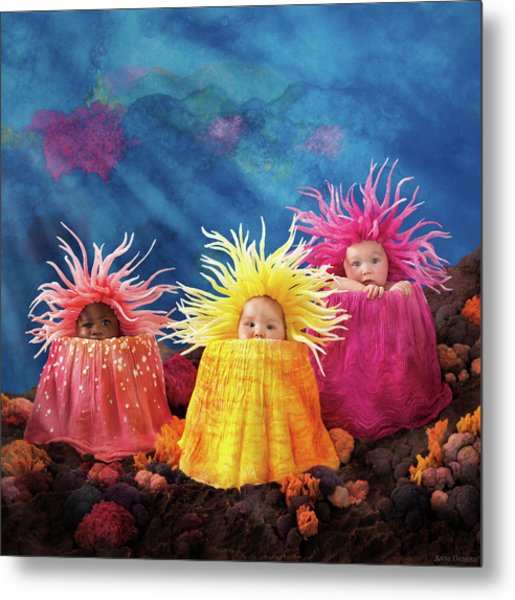 Sea Anemones  Metal Print by Anne Geddes