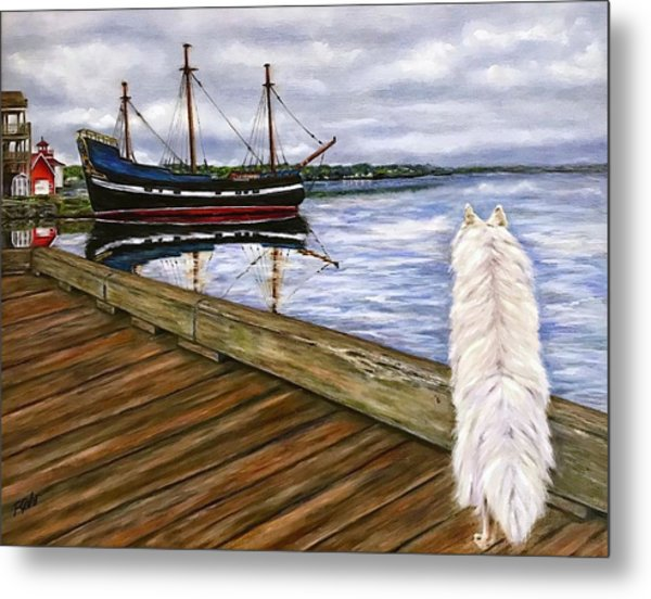 Sea Dog Metal Print