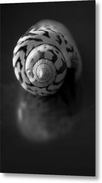 Sea Gem In Black And White Metal Print