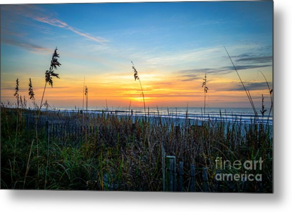 Sea Oats Sunrise Metal Print