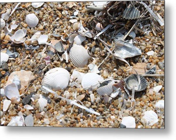 Sea Ribbons And Shells Metal Print by Marcie Daniels