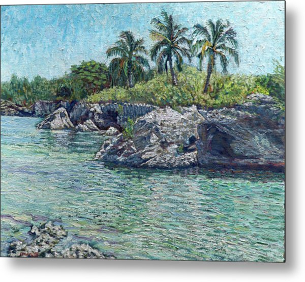 Sea Rocks And Coconuts Metal Print