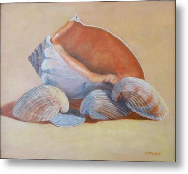 Sea Shells Metal Print by Betty Henderson