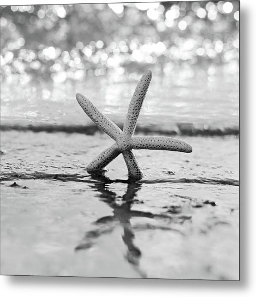 Sea Star Bw Metal Print