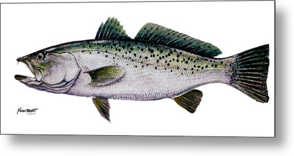 Sea Trout Metal Print