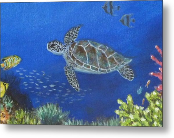 Sea Turtle 2 Metal Print