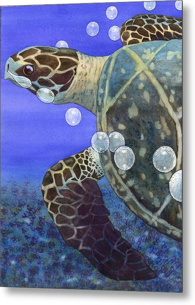 Sea Turtle Metal Print by Catherine G McElroy