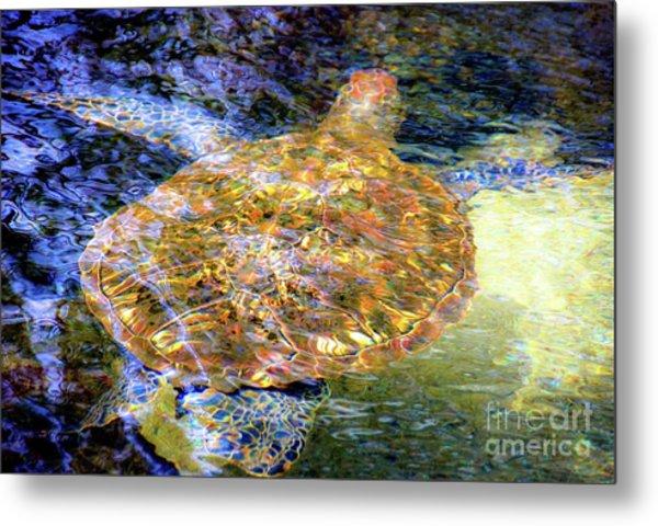 Sea Turtle In Hawaii Metal Print