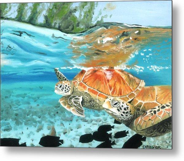 Sea Turtles Metal Print by Chris Wiese