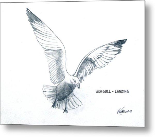 Seagull - Landing Metal Print by Frederic Kohli