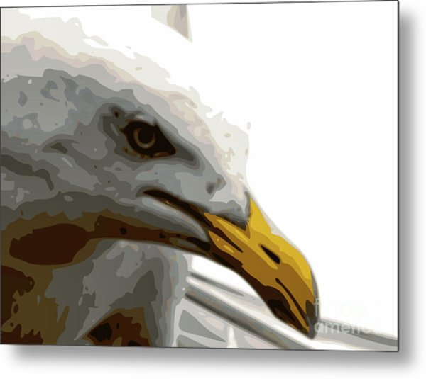 Seagull Closeup Metal Print