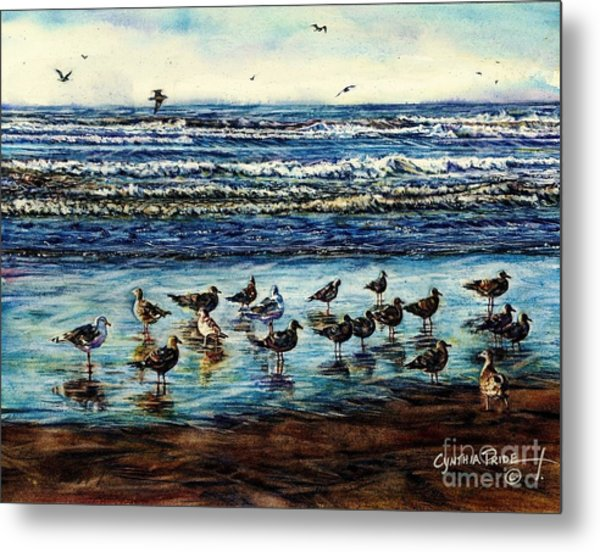 Seagull Get-together Metal Print