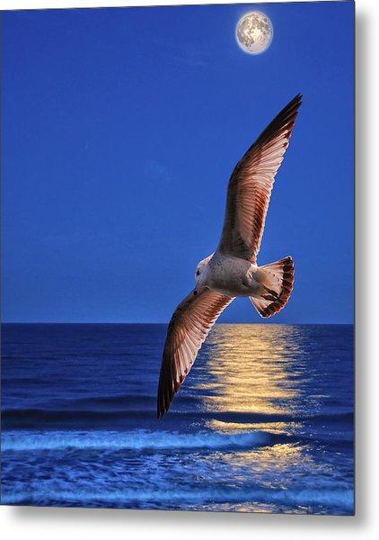 Seagull In The Moonlight Metal Print