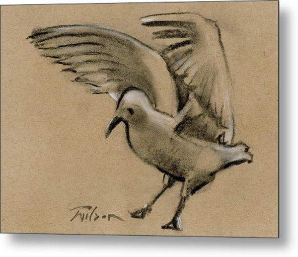 Seagull Landing Metal Print by Ron Wilson