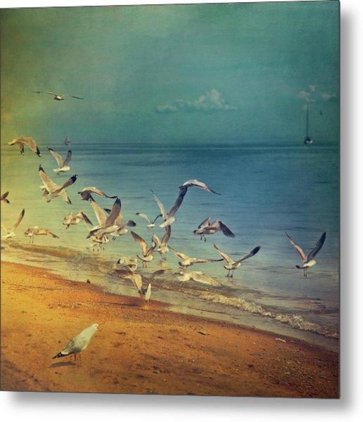 Seagulls Flying Metal Print