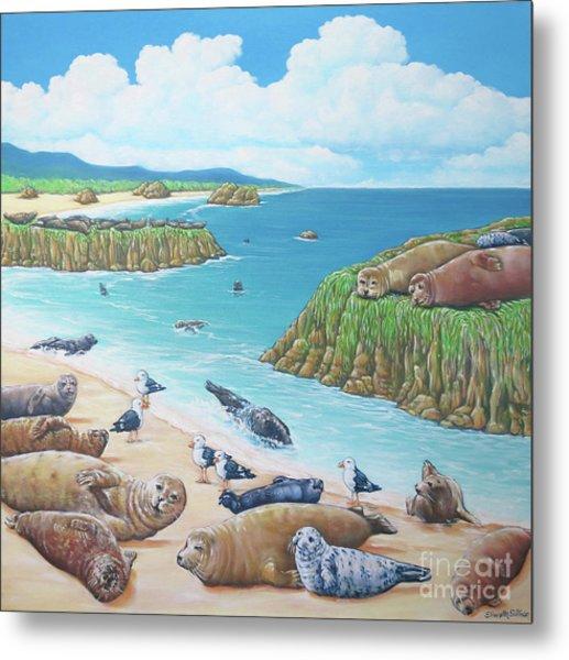 Seal Sanctuary  Metal Print