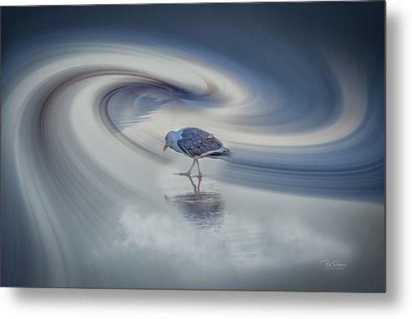 Searcher Metal Print