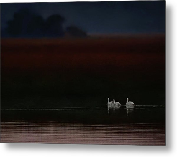 Searching For The Breakfast Bar Metal Print