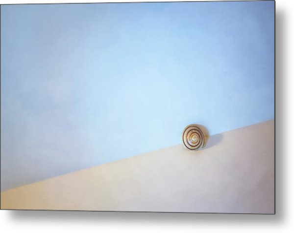 Seashell By The Seashore Metal Print