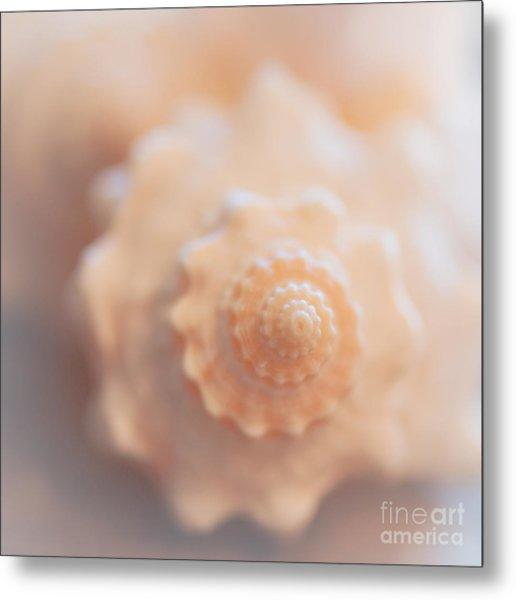 Seashell Dream Metal Print