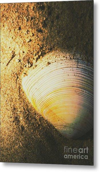 Seashells And Beach Colours Metal Print