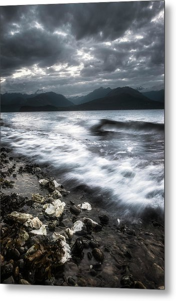 Seashells By The Seashore Metal Print
