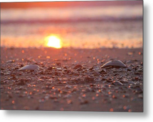 Seashells Suns Reflection Metal Print