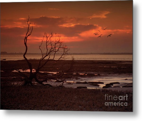 Seashore At Dawn Metal Print