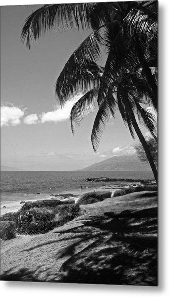 Seashore Palm Trees Metal Print