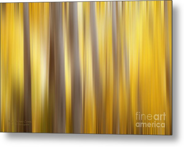 Seasoned Metal Print