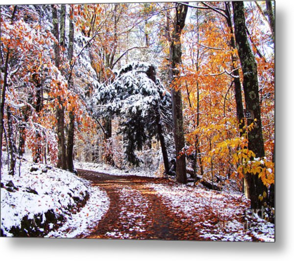Seasons Cross Metal Print