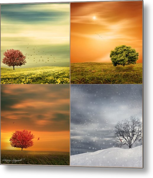 Seasons' Delight Metal Print