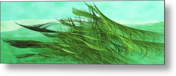 Seaweed Moves Metal Print
