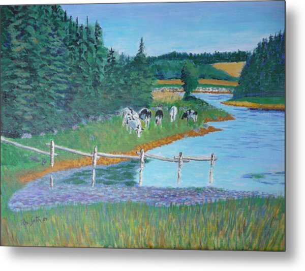 Second Peninsula Cows Metal Print by Rae  Smith