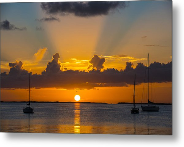 See The Light Metal Print
