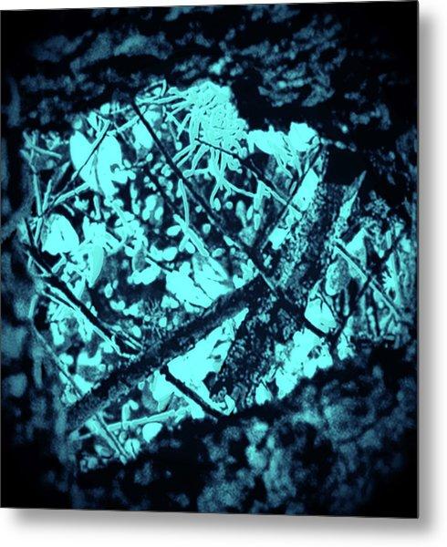Seeing Through Trees Metal Print