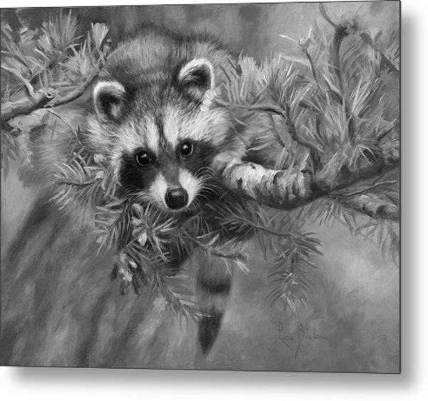 Seeking Mischief - Black And White Metal Print