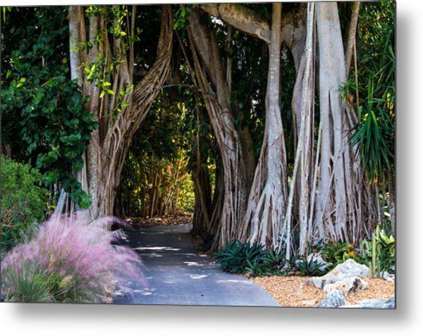 Selby Secret Garden 2 Metal Print