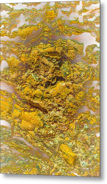Semi Translucent Bark Abstract Metal Print