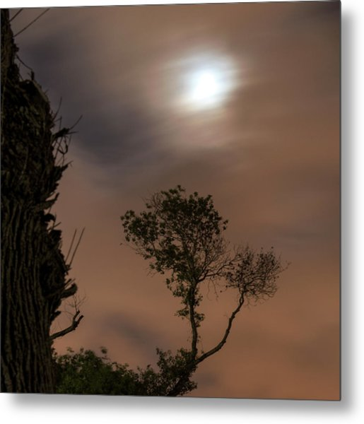 Metal Print featuring the photograph Serenity... by Dubi Roman