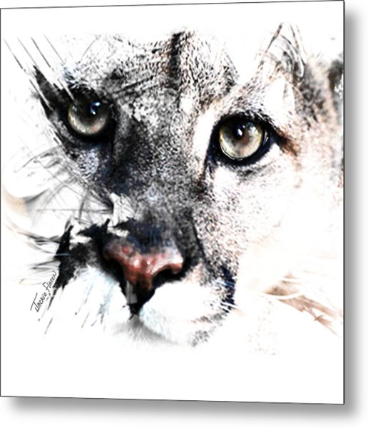 Seriously Cougar Metal Print