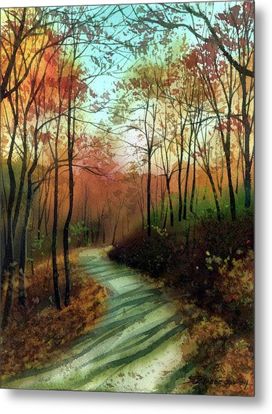 Serpentine Road Metal Print