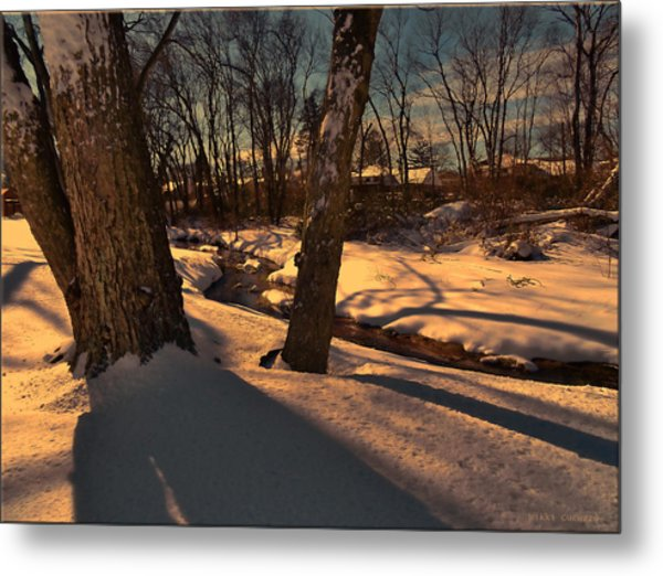 Setting Sun On A Winters Day Metal Print