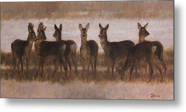 Seven Roe Deers Metal Print