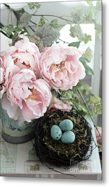 Shabby Chic Peonies With Bird Nest Robins Eggs - Summer Garden Peonies Metal Print