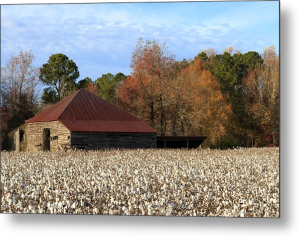 Shack In The Field Metal Print