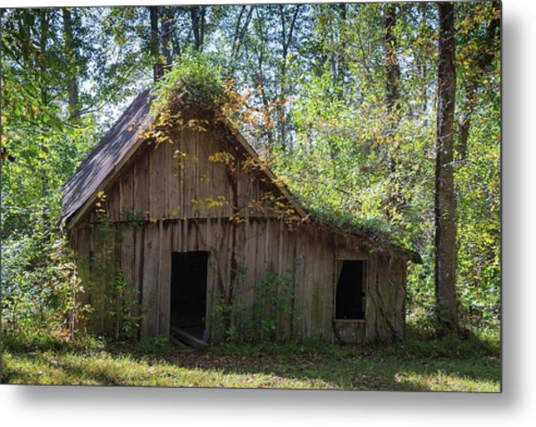 Shack In The Woods Metal Print