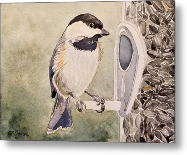 Shades Of Black Capped Chickadee Metal Print