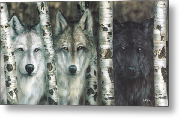 Shades Of Gray Metal Print
